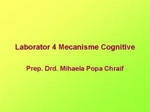 Laborator 4 Mecanisme Cognitive Prep Drd Mihaela Popa
