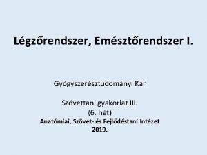 Lgzrendszer Emsztrendszer I Gygyszersztudomnyi Kar Szvettani gyakorlat III