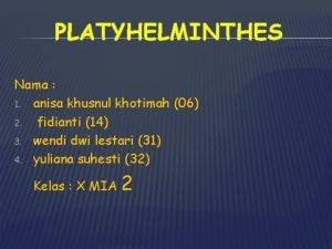 PLATYHELMINTHES Nama 1 anisa khusnul khotimah 06 2