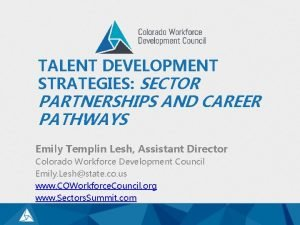 TALENT DEVELOPMENT STRATEGIES SECTOR PARTNERSHIPS AND CAREER PATHWAYS