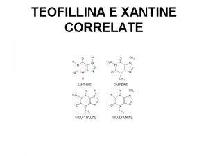 TEOFILLINA E XANTINE CORRELATE MECCANISMO DAZIONE 1 Linibizione