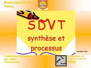 Municipalit de Tunis SDVT synthse et processus Fdration