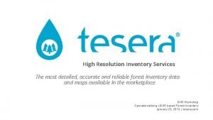 High Resolution Inventory Services The most detailed accurate