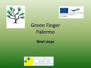 Green Finger Palermo Next steps Green Finger for