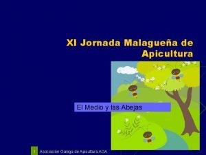 XI Jornada Malaguea de Apicultura El Medio y