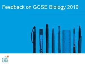 Feedback on GCSE Biology 2019 GCSE Biology Unit
