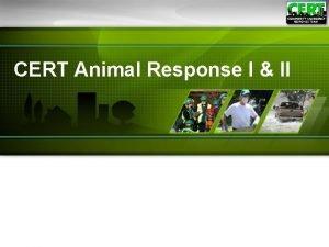 CERT Animal Response I II CERT Animal Response