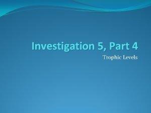 Investigation 5 Part 4 Trophic Levels Warm up