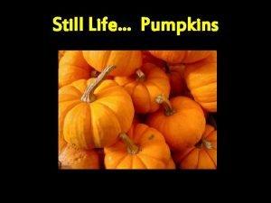 Still Life Pumpkins Still Life Pumpkin retrieved Sept