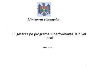 Ministerul Finanelor Bugetarea pe programe i performan la