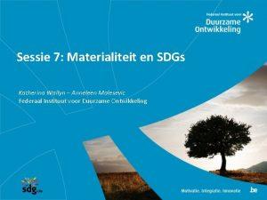 Sessie 7 Materialiteit en SDGs Katherina Wallyn Anneleen