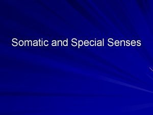 Somatic and Special Senses Categories Somatic Senses Touch