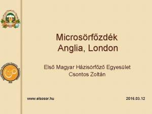 Microsrfzdk Anglia London Els Magyar Hzisrfz Egyeslet Csontos