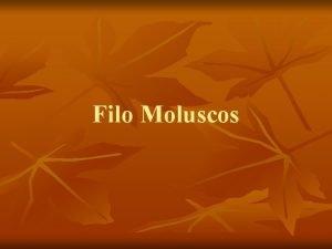 Filo Moluscos Caractersticas Principais Os moluscos do latim