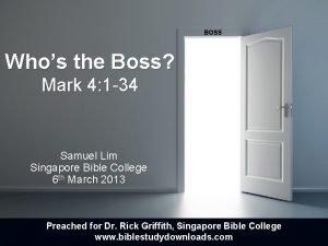 BOSS Whos the Boss Mark 4 1 34