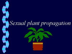 Sexual plant propagation Propagation of plants from seeds