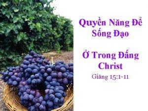 Quyn Nng Sng o Trong ng Christ Ging