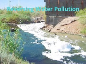 Reversing Water Pollution Water Facts of the Earth