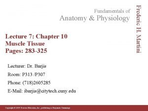 Anatomy Physiology Lecture 7 Chapter 10 Muscle Tissue