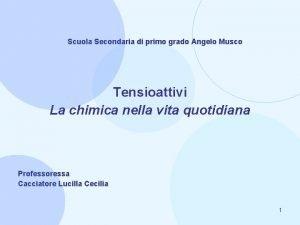 Scuola Secondaria di primo grado Angelo Musco Tensioattivi