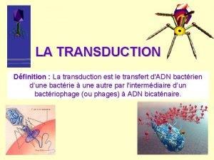 LA TRANSDUCTION Dfinition La transduction est le transfert