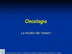 Oncologia Lo studio dei tumori Universit di Napoli