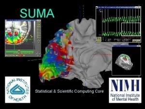 SUMA Statistical Scientific Computing Core 1 01212009 SSCCNIMH