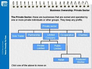 Business Ownership Private Sector The Private Sector these