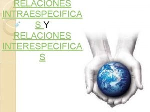 RELACIONES INTRAESPECIFICA SY RELACIONES INTERESPECIFICA S Familia Gregaria