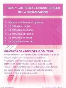 TEMA 7 LAS FORMAS ESTRUCTURALES DE LA ORGANIZACIN