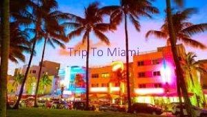 Trip To Miami Our Outline Going to Miami
