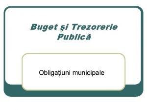 Buget i Trezorerie Public Obligaiuni municipale Cadrul legal