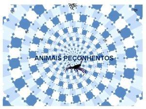 ANIMAIS PEONHENTOS O QUE SO ANIMAIS PEONHENTOS So
