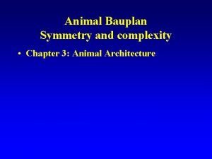 Animal Bauplan Symmetry and complexity Chapter 3 Animal