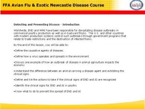 Detecting and Preventing Disease Introduction Worldwide END and