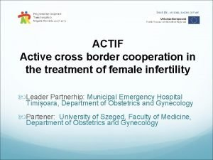 ACTIF Active cross border cooperation in the treatment