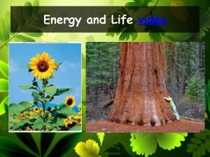 Energy and Life video Energy comes in many