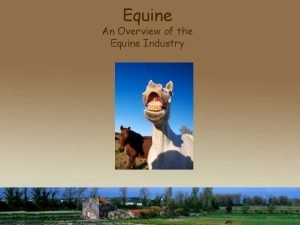 Equine An Overview of the Equine Industry Objectives