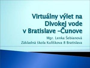 Virtulny vlet na Divokej vode v Bratislave unove