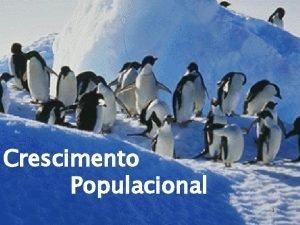 Crescimento Populacional 1 1 Terminologia 2 Crescimento populacional