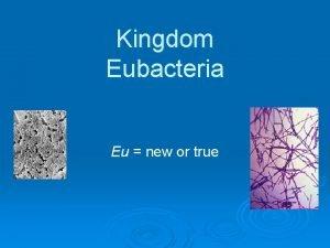 Kingdom Eubacteria Eu new or true Parts of