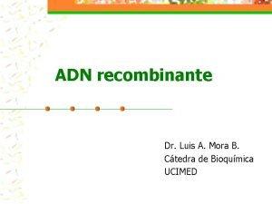 ADN recombinante Dr Luis A Mora B Ctedra