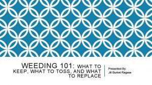 WEEDING 101 WHAT TO KEEP WHAT TO TOSS
