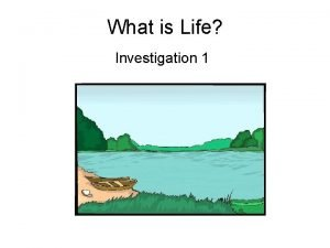 What is Life Investigation 1 Targets Investigation 1
