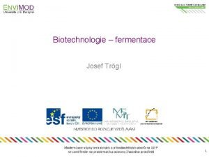 Biotechnologie fermentace Josef Trgl Modernizace vuky technickch a