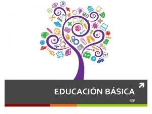 EDUCACIN BSICA SEP PRIORIDADES DE LA SEP I