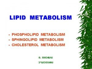 LIPID METABOLISM PHOSPHOLIPID METABOLISM SPHINGOLIPID METABOLISM CHOLESTEROL METABOLISM