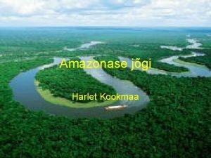 Amazonase jgi Harlet Kookmaa Amazonase asukoht LunaAmeerikas Voolab