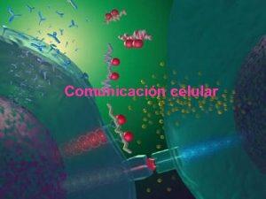 Comunicacin celular Comunicacin Celular La supervivencia de los