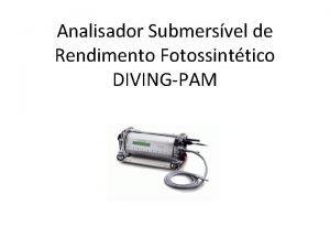 Analisador Submersvel de Rendimento Fotossinttico DIVINGPAM Informaes Gerais